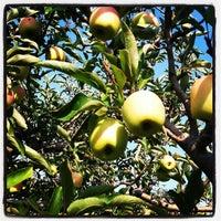 Photo taken at Elegant Farmer by JoMarie W. on 9/16/2012