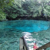 Photo taken at Ginnie Springs by Jeremy R. on 6/13/2014