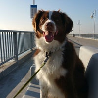 Photo taken at Belmont Veterans Memorial Pier by Stacey~Marie on 1/4/2015
