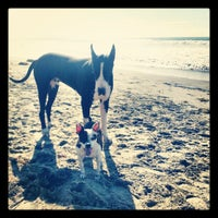 Photo taken at Huntington Dog Beach by Stacey~Marie on 12/2/2012