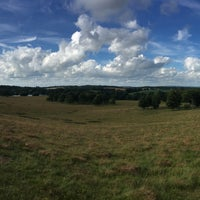 Photo taken at Petworth Park by Olly S. on 7/5/2017