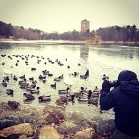 Photo taken at Jamaica Pond by Steve G. on 2/5/2013
