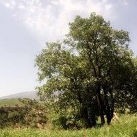 Photo taken at Ferga( Düzalan köyü) Piknik Alanı by Skskskks C. on 4/30/2017