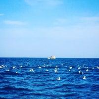 Photo taken at Marmara Denizi by HÜLYA Ç. on 5/7/2017