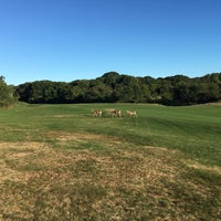 Photo taken at Montauk Downs State Park Golf Course by Sean S. on 9/12/2016