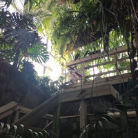 Photo taken at The Rainforest by Luis A. V. on 11/17/2017