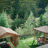 Photo taken at Yeşil Vadi Restaurant by Yadigar B. on 10/12/2016