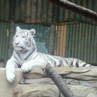 Photo taken at ZOO Liberec by Jan S. on 10/6/2012