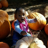 Photo taken at Uncle Bobs Pumpkin Patch by Cardell O. on 10/22/2016