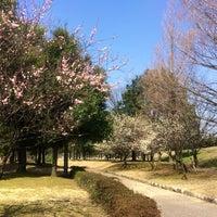 Photo taken at 常願寺川公園 by tee tea on 3/28/2014