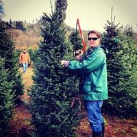 photo taken at northern lights christmas tree farm by jennifer r on 122 - Northern Lights Christmas Tree Farm