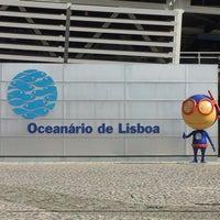 Photo taken at Oceanário de Lisboa by Paulo L. on 10/12/2012