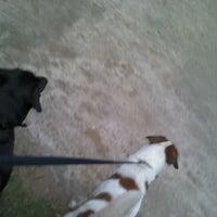 Photo taken at Doggy Walk by Viran F. on 9/28/2012