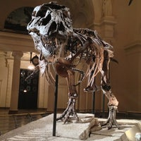 Photo taken at The Field Museum by Will B. on 1/6/2013
