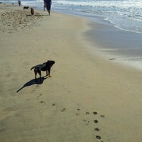 Photo taken at Huntington Dog Beach by Daisy K. on 11/5/2012