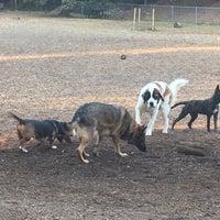 Photo taken at Oakhurst Dog Park by Ed A. on 11/17/2016