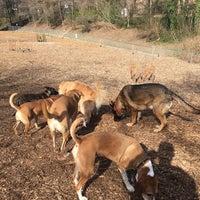 Photo taken at Oakhurst Dog Park by Ed A. on 2/4/2017