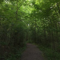 Photo taken at Sacred Grove by Scotdawg on 6/22/2016