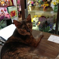 Photo taken at Perna's Plant & Flower Shop by Kyle O. on 8/2/2013