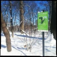 Das Foto wurde bei Central Park - North Woods von bethanne am 2/9/2013 aufgenommen