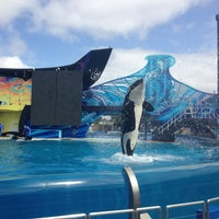 Photo taken at SeaWorld San Diego by Fatma on 3/10/2013