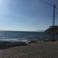 6/10/2017 tarihinde Arzu S.ziyaretçi tarafından Eniştenin Yeri'de çekilen fotoğraf