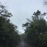 9/10/2018 tarihinde Pair P.ziyaretçi tarafından ผาเดียวดาย'de çekilen fotoğraf