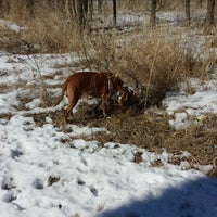 Photo taken at Howard Dog Park by Lisa E. on 3/16/2014