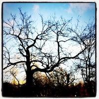 Photo taken at Parco Di Via Arcobaleno by francesca f. on 12/20/2012