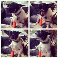 Photo taken at Clementon Animal Hospital by Michael C. on 7/16/2014