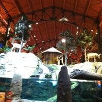 Photo taken at Bass Pro Shops by Jennifer A. on 9/26/2012