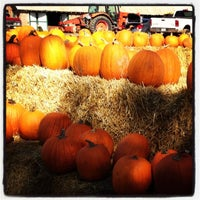 Photo taken at Rock Creek Farm by Taryn D. on 10/14/2012
