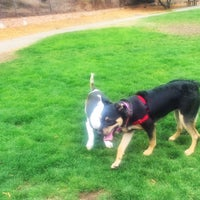Photo taken at St. Mary's Park Dog Run by Wilfred W. on 9/1/2016