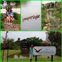Photo taken at South Padre Island Birding & Nature Center by Helen M. on 6/22/2014