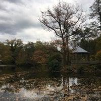 Снимок сделан в Gaststätte Waldsee пользователем Borja 10/21/2017