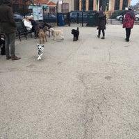 Photo taken at Churchill Field Dog Park by Zig on 3/12/2017