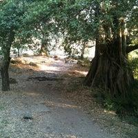 Foto tirada no(a) Campamento Meztitla por Mar O. em 12/29/2012