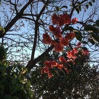 Foto tomada en El Encanto por Fer L. el 4/3/2013