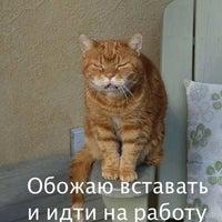 Photo taken at Алеутская улица by Мария К. on 10/27/2016