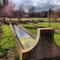 2/17/2013にChris P.がParco Regionale dell'Appia Anticaで撮った写真