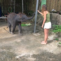Photo taken at Safari Elephant by inci on 8/16/2017