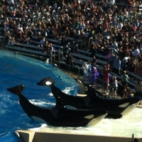 Photo taken at SeaWorld San Diego by Trevor H. on 1/22/2013