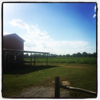 Photo taken at Strawberries on 903 by Kim F. on 6/1/2015