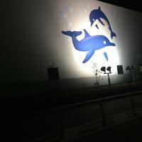 Photo taken at 堺浜マリーナ by Tomo🍋 on 12/5/2017