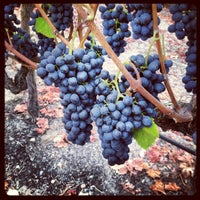 Photo taken at Saralee Vineyards by William A. on 10/7/2012