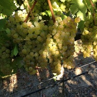 Photo taken at Saralee Vineyards by William A. on 9/5/2013
