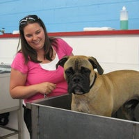 Dog wash grooming you can do it pet service in portland photo taken at dog wash grooming you can do it by dog wash grooming solutioingenieria Choice Image