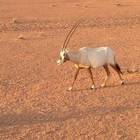 Photo taken at Al Maha Desert Resort & Spa by Wael H. on 3/28/2013