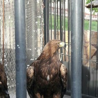 Photo taken at Barajin Zoo | باغ وحش باراجين by Mehri . on 5/18/2016