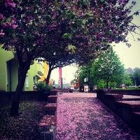 Photo taken at Trattoria La Terrazza by Stefan B. on 4/24/2014